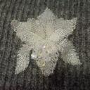 Орхидея Хрусталь2