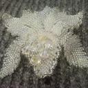 Орхидея Хрусталь3