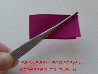 3_2012-01-09.jpg